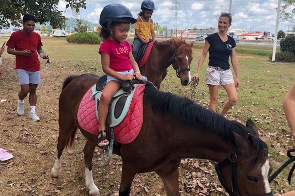 Journée du cheval le 15 septembre