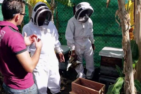 Projet Bardzour : détenus apprenant l'apiculture
