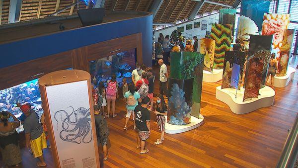 Te Fare Natura de Moorea : l'ouverture officielle au public