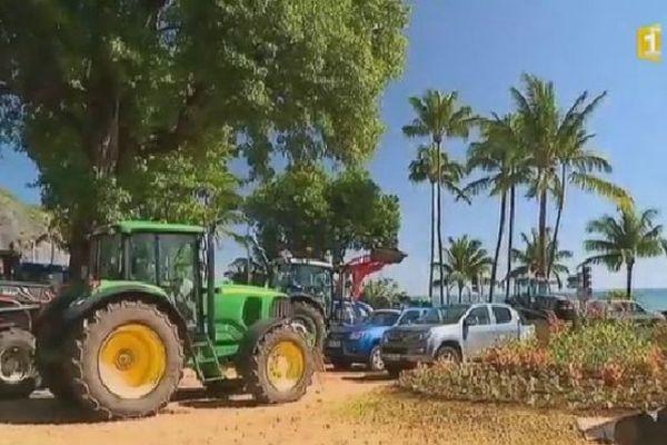 Planteurs devant la préfecture
