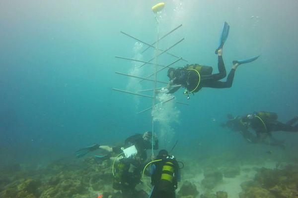 Mer (nettoyage)