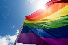 Drapeau arc-en-ciel lors d'une manifestation à Berlin lors de la Journée mondiale contre l'homophobie, la transphobie et la biphobie le 17 mai 2015.