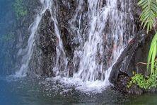 Rivière du nord de la Martinique