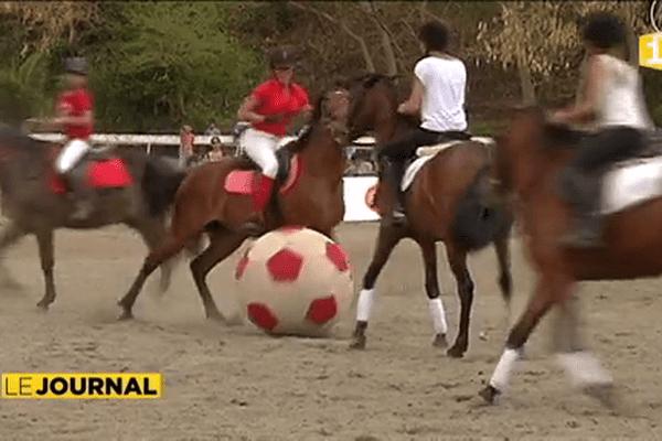 Les chevaux aussi se mettent au beach socccer