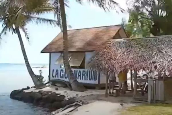 Lagoonarium Moorea