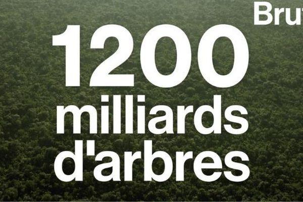 1200 milliards arbres