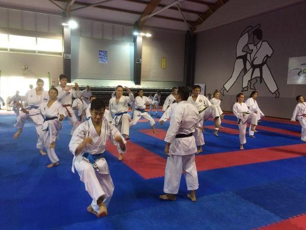 Karaté Training Camp