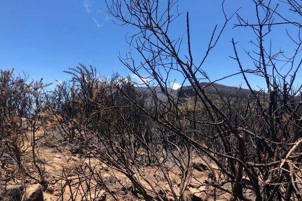 incendie Maïdo J15 pompiers toujours mobilisés 211120