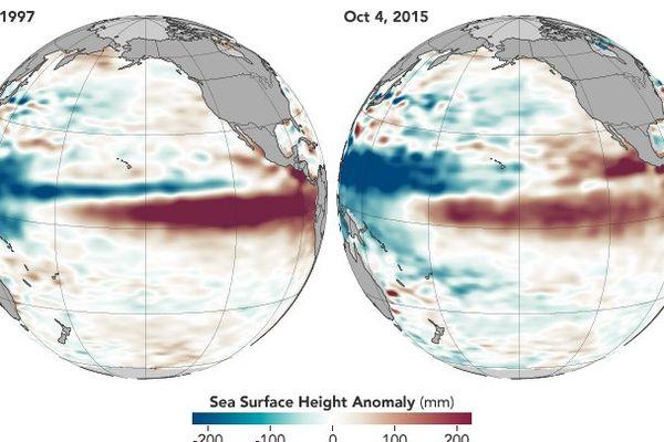 Carte comparative de l'anomalie des températures d'eau de surface dans le Pacifique