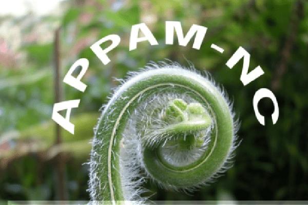 APPAM NC Association pour la Promotion des Plantes Aromatiques et Médicinales de Nouvelle-Calédonie.