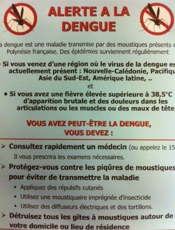 Risque d'épidémie de dengue de type 2
