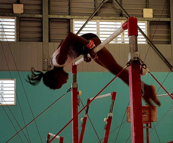 gymnastique barres