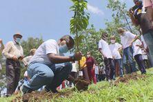 William, élève de 6ème, plante son arbre, dans l'enceinte du collège de Vx-Habitants