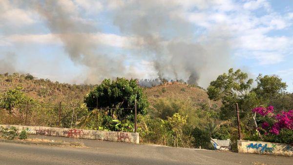 Feu de Païta, Mont-Mou. 14 novembre 2019