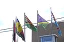 Groupe Mélanésien Fer de Lance: début des travaux à Poindimié