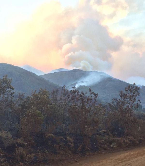 Le feu de La Coulée du 30 novembre 2019, en fin d'après-midi, depuis la route de la montagne des Sources.