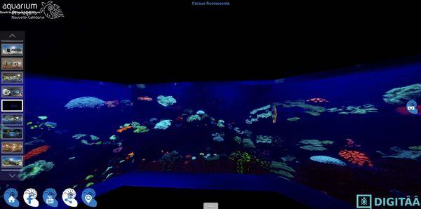 Visite virtuelle de l'aquarium
