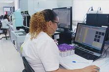 Travail en laboratoire en Martinique.
