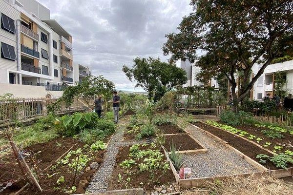La Possession aménagement coeur de ville ecoquartier jardin partagé 040820