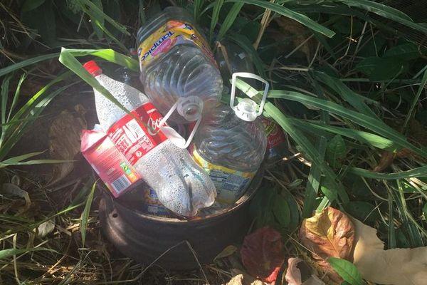 Journée mondiale du ramassage des déchets 2019