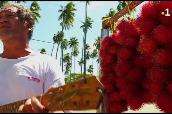 Papeari : la saison des ramboutans bat son plein