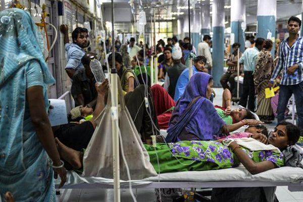 Dengue Inde