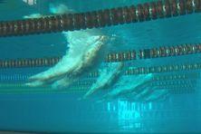 Les championnats de Calédonie de natation à la piscine de Koutio