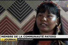 La déforestation en débat à la COP 21