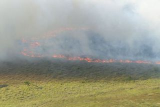 Incendie sur la route de Kourou