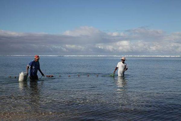 Pêcheurs traditionnels demande de carte de pêche lagon la Saline les Bains