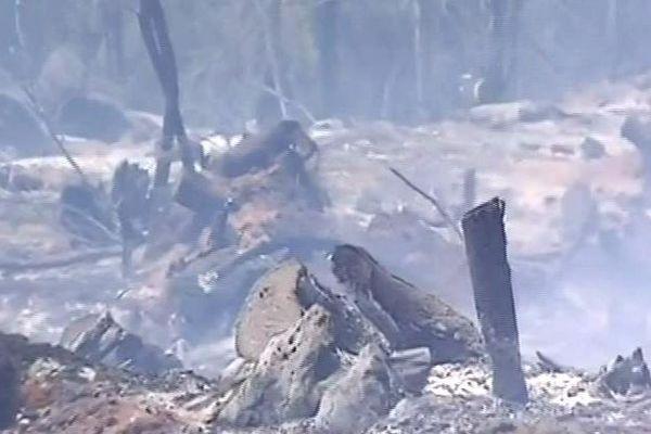 Incendie du Maïdo octobre 2011