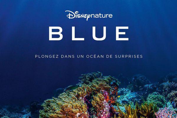 "Disney nature ""Blue"""