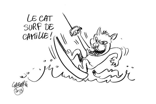Le cat surf de camille