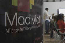 Dirigeants et adhérents de Madivial lors d'une réunion.