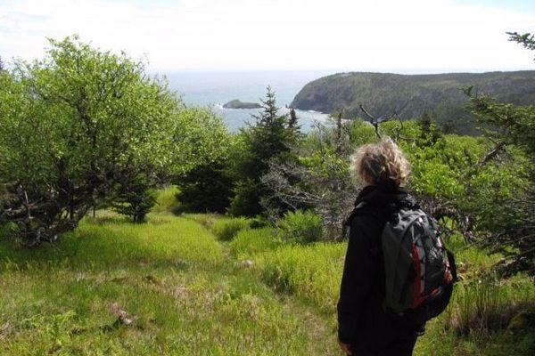 Naturaliste Saint-Pierre et Miquelon 2