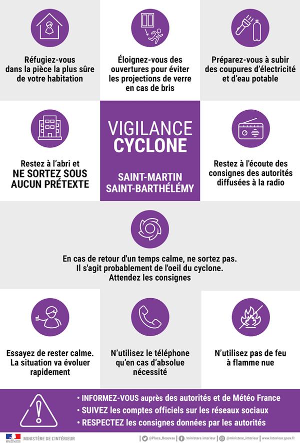 Vigilance violet