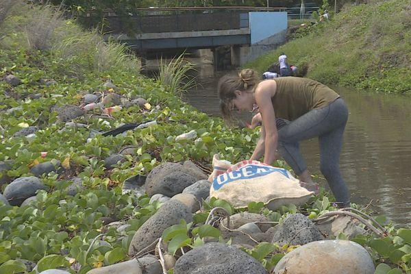Les bénévoles de Project Rescue Ocean Réunion ont nettoyé le front de mer de Saint-Denis