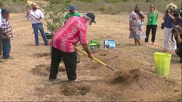 Lancement du centre de détention / prison de Koné, 30 octobre 2019, Néaoutyine plante un arbre