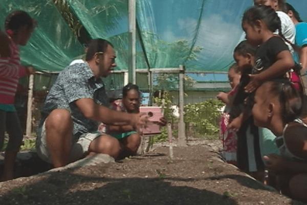 Le potager de l'école Apataki