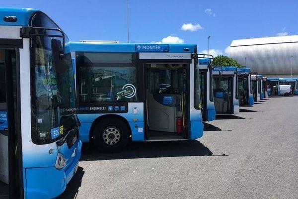 bus citalis 211219