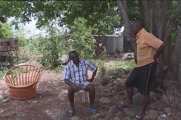 Citoyens Haïtiens en Guadeloupe