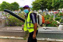 Une grande opération de nettoyage a été lancée dans les trois cimetières de Saint-Louis pour lutter contre les moustiques, vecteurs du virus de la dengue.