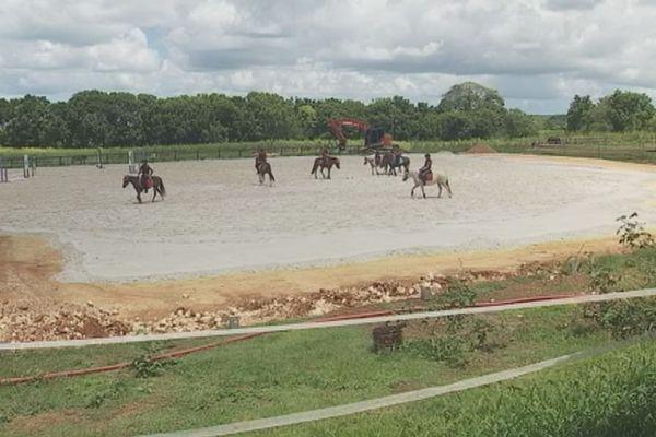 Les cavaliers de Saint Georges