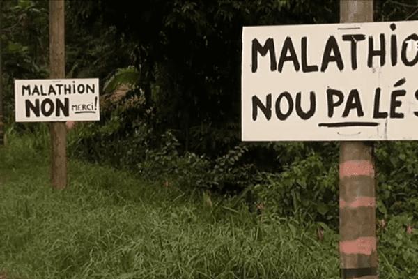 Arrêt du malathion