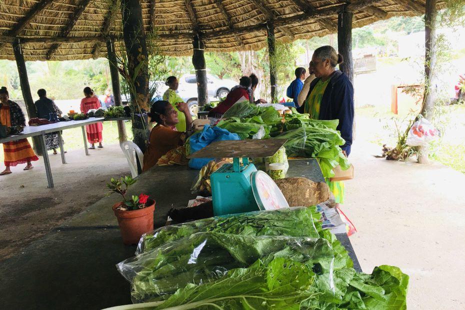 Ponérihouen mise sur les mini-marchés solidaires - Nouvelle-Calédonie la 1ère