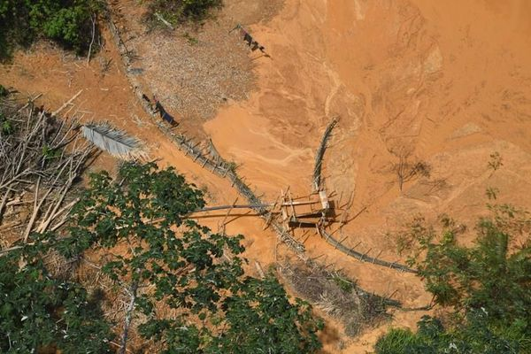 Les ravages de l'orpaillage en Guyane
