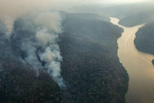 Photo aérienne d'un feu de forêt sur le territoire Arariboia dans l'Etat du Maranhao en 2015 où vivent 12 000 Guajajaras