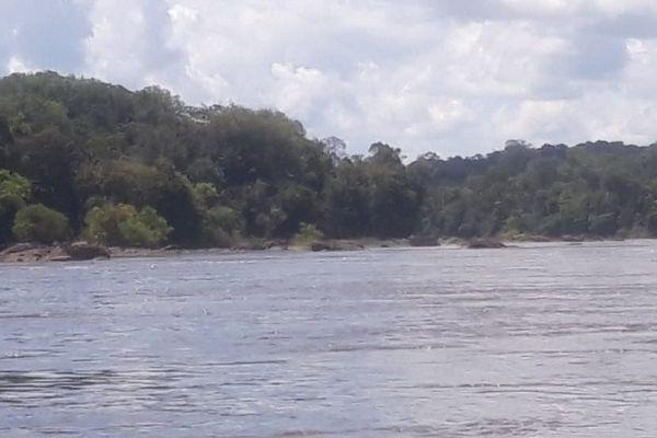 Le fleuve Oyapock