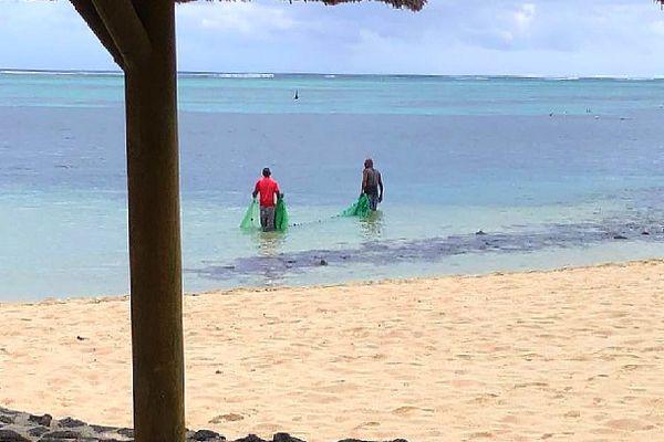 Braconnage dans le lagon à l'île Maurice février 2021