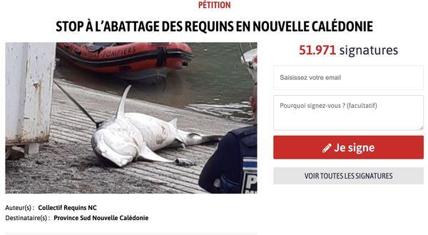 Capture de la pétition contre l'abattage de requins